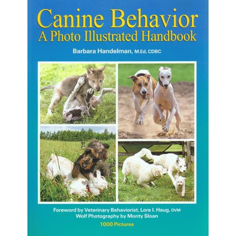 canine behaviour