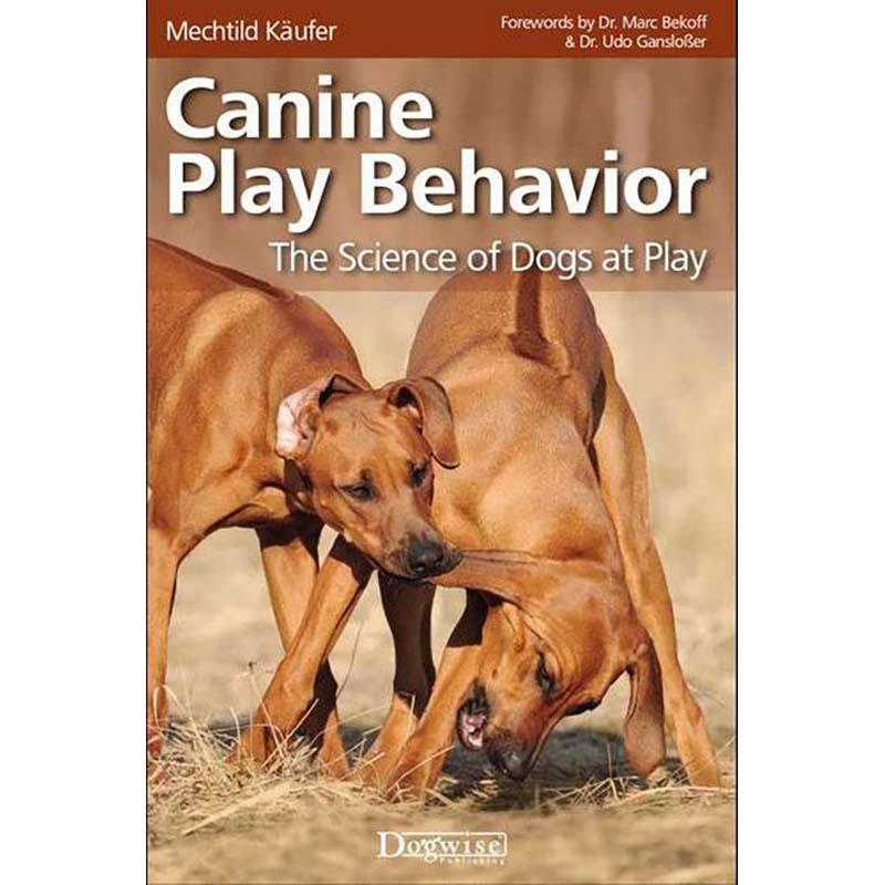 Canine Play