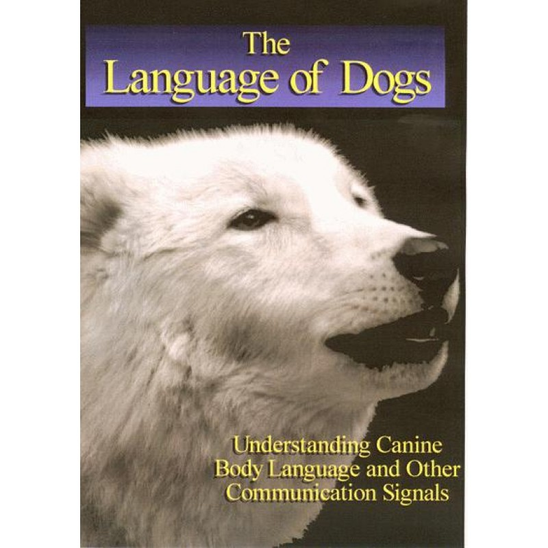 the language of dogs dvd