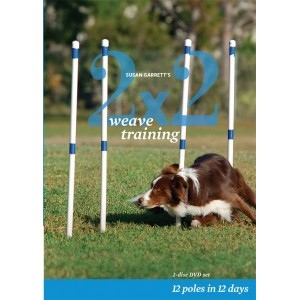 2x2 weave training DVD