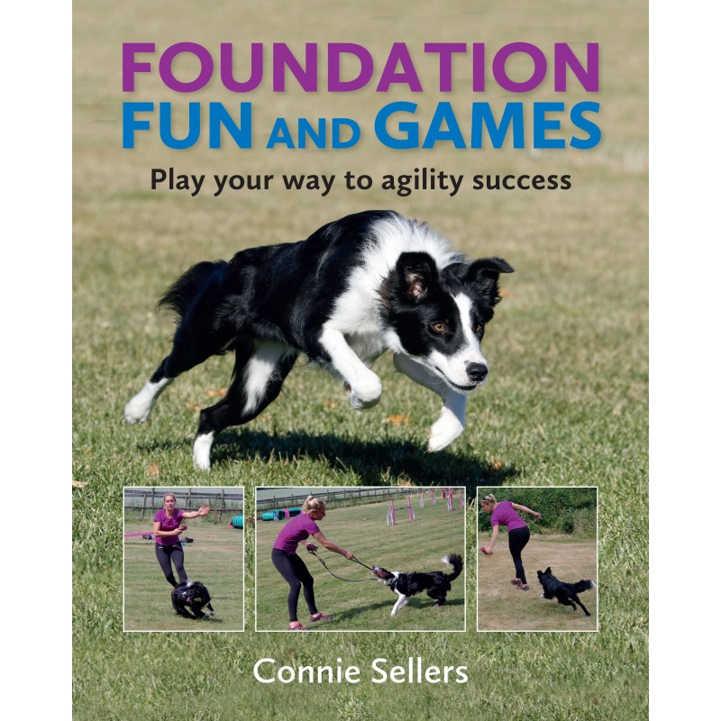 FoundationFunandGames FrontCover