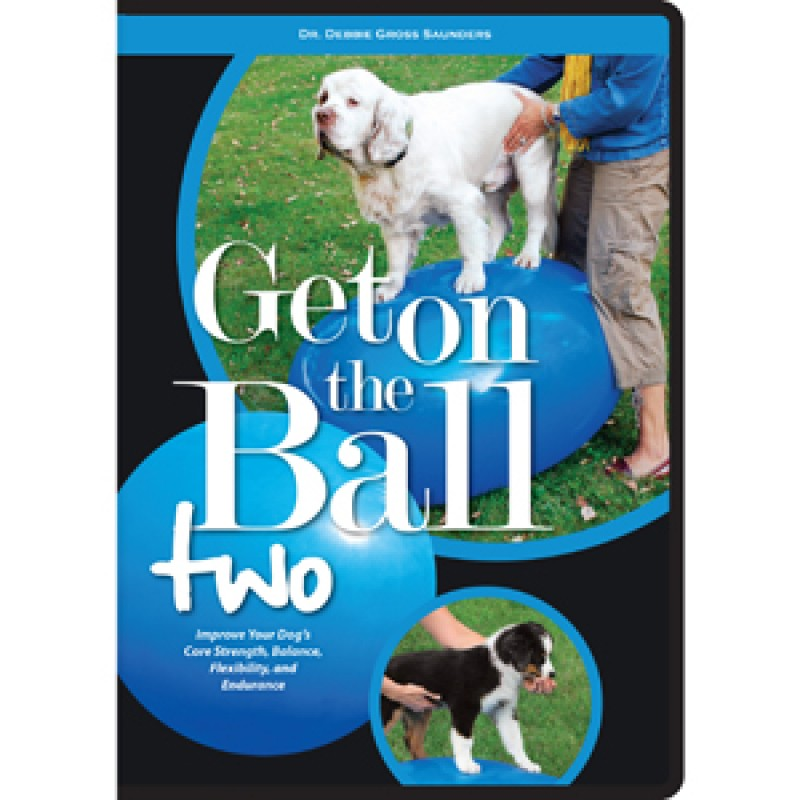 GetOnTheBallTwoDVD Big