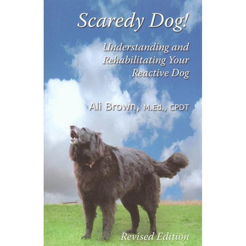 Scaredy dog