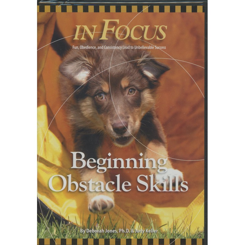 beginning obstacle skills