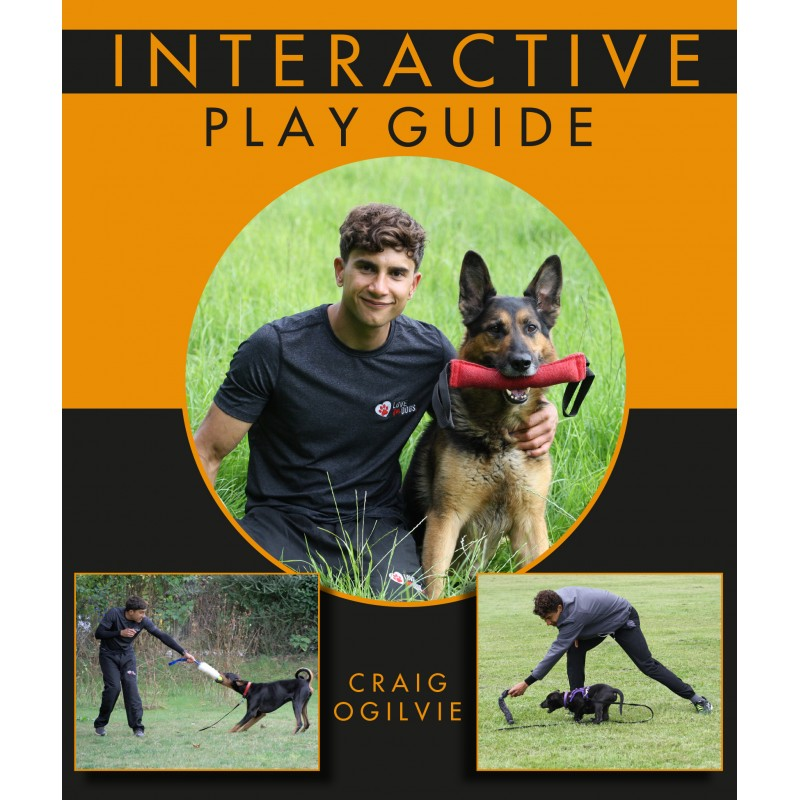 Interactive Play Guide