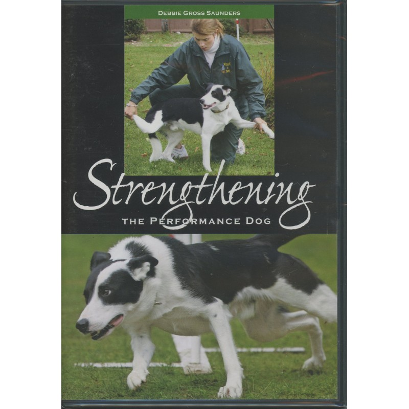 strengthening the performance dog