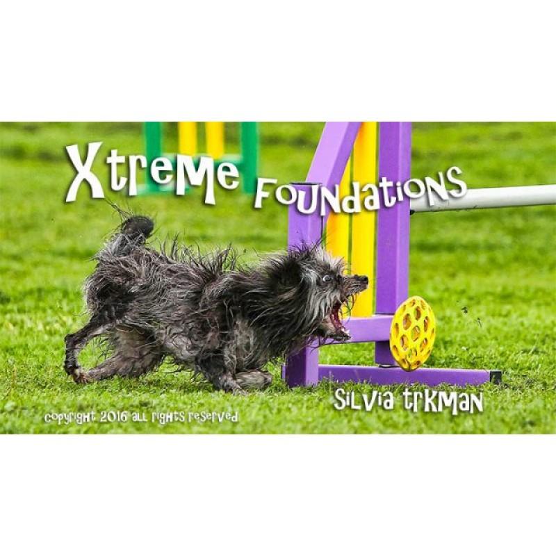 xtreme foundations