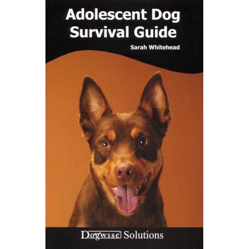 Adolescent survival guide