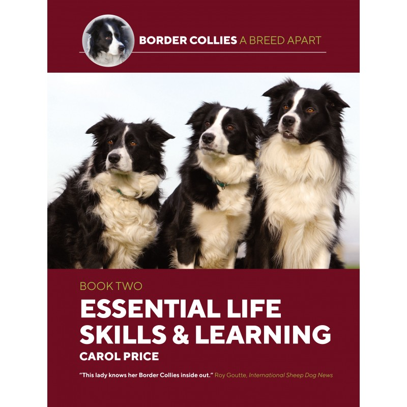 Border Collies Book 2