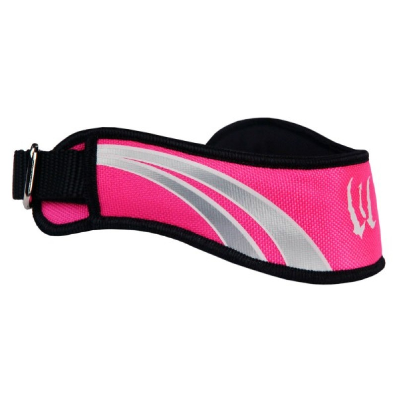 Wicked Hounds Sports Collar