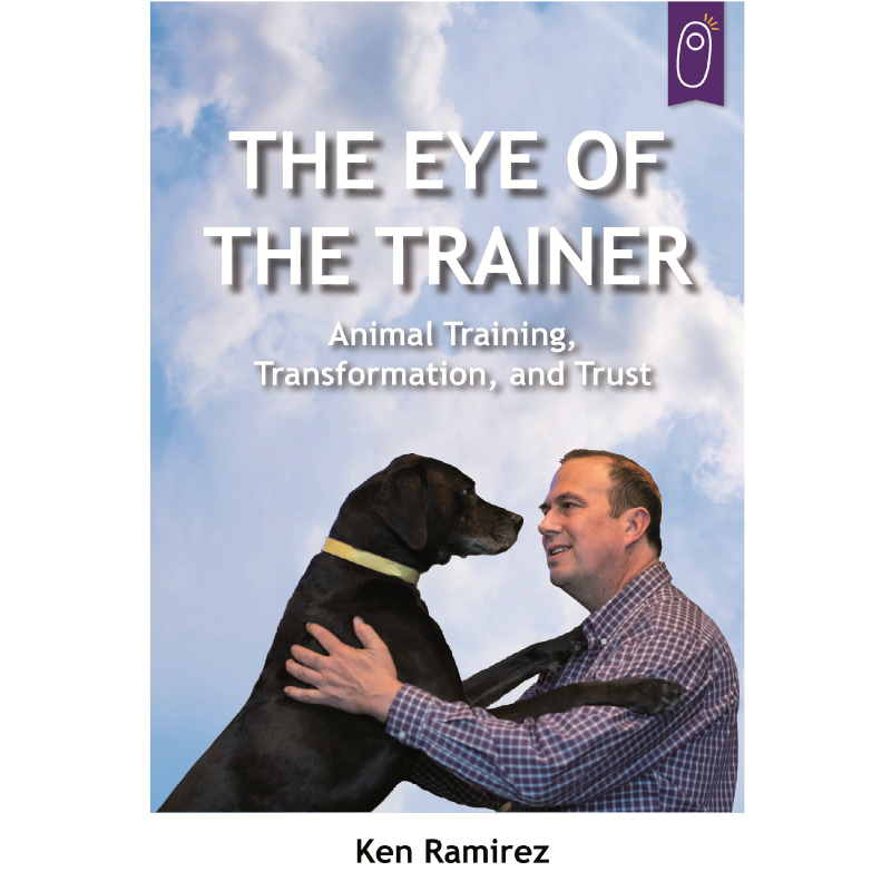 Eye of the trainer