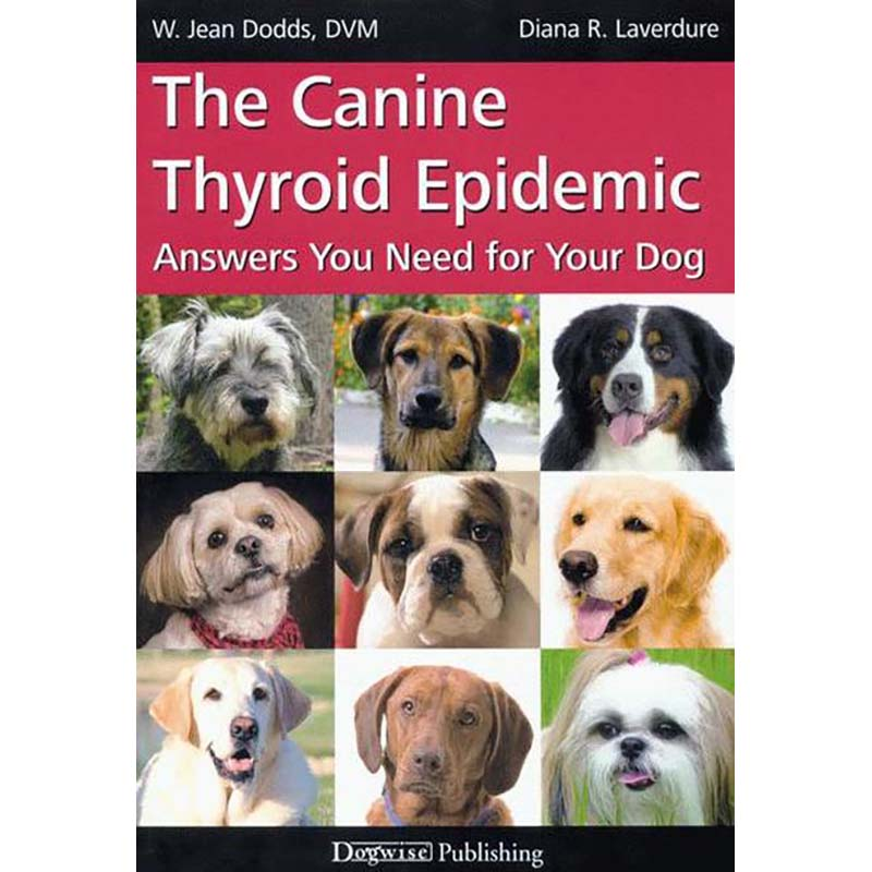 canine thyroid