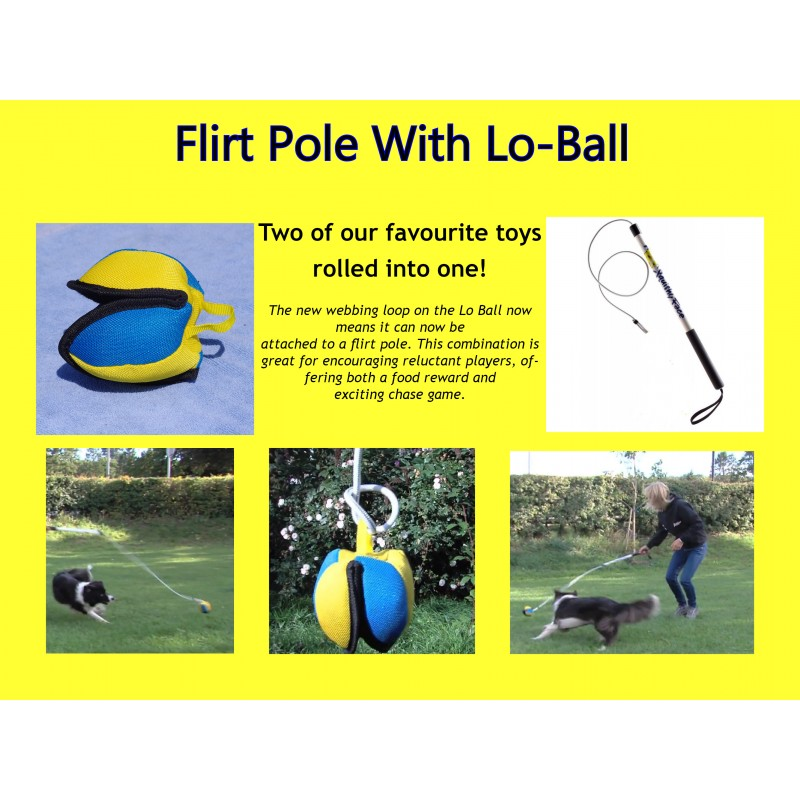 Flirt Pole with Loball