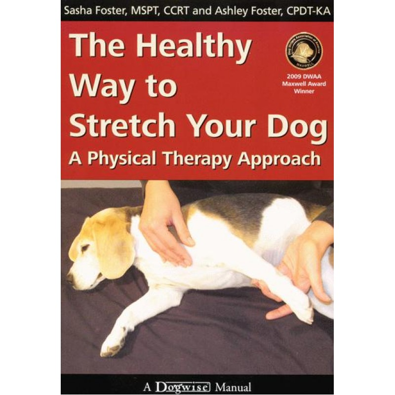 ealthy way to stretch your dog