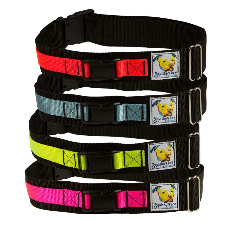 leash belt-
