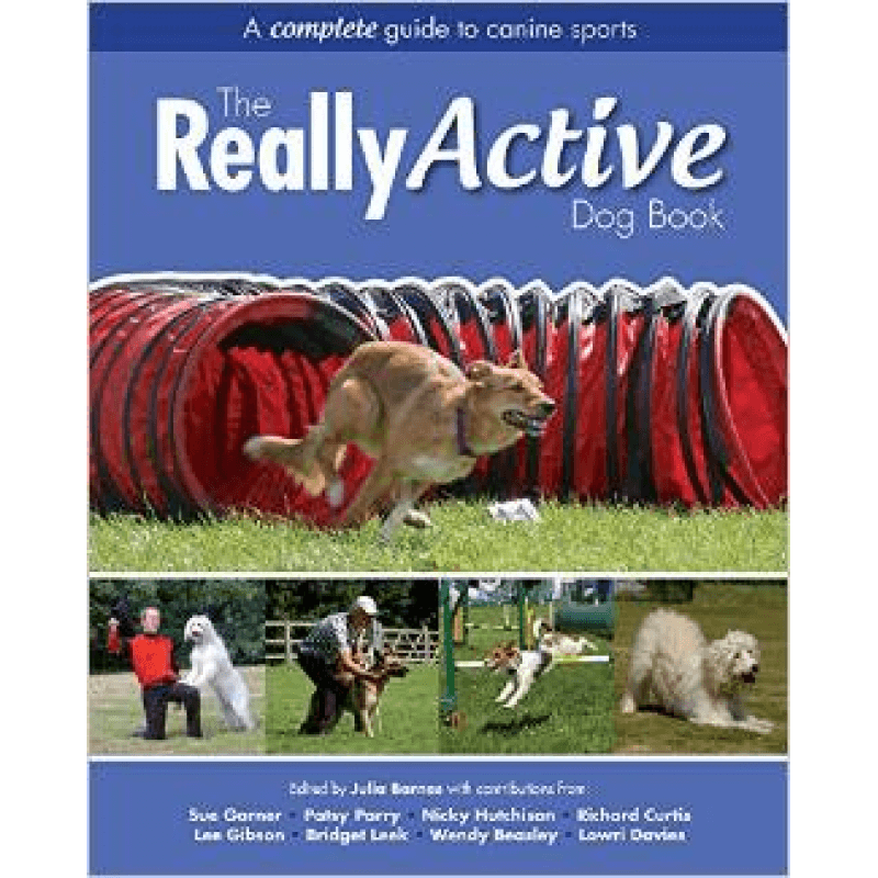 really active dog-