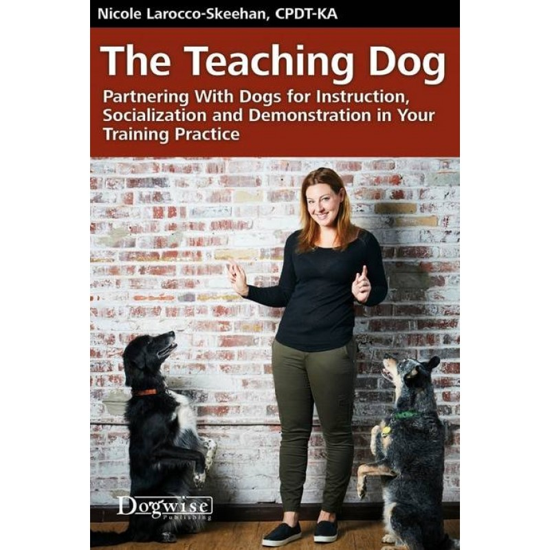 The Teaching Dog