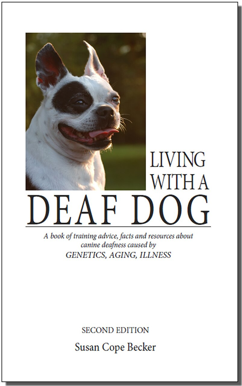 Living with a Deaf Dog